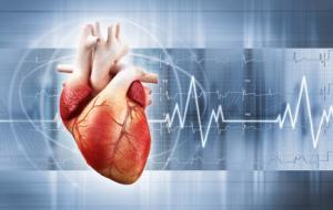 Кардиология и кардиохирургия в Израиле